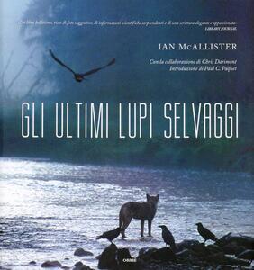Gli ultimi lupi selvaggi