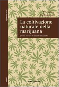 La coltivazione naturale della marijuana. Come tenere le piante in salute
