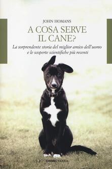 Steamcon.it A cosa serve il cane? La sorprendente storia del miglior amico dell'uomo e le scoperte scientifiche più recenti Image
