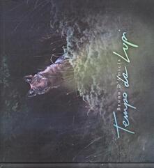 Tempo da lupi - Bruno D'Amicis - copertina