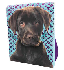 Il mio zainetto dei cuccioli. Con adesivi. Ediz. illustrata. Con gadget.pdf