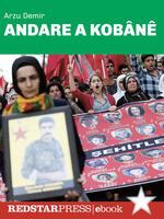 Andare a Kobane