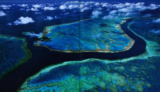 Australia. L'isola continente - Olivier Grunewald,Bernadette Gilbertas - 3