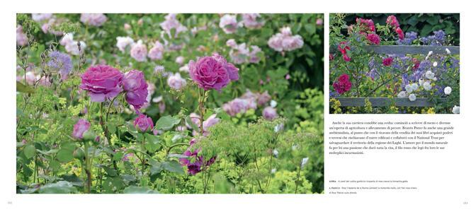 Giardini segreti - Claire Masset - 6