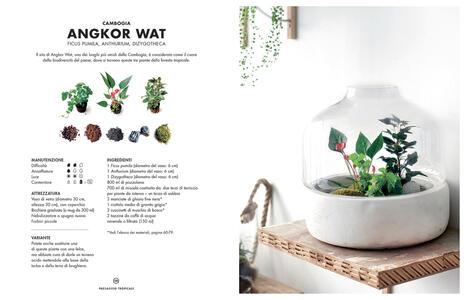 Terrarium. Mondi vegetali sotto vetro - Anna Bauer,Noam Levy - 8