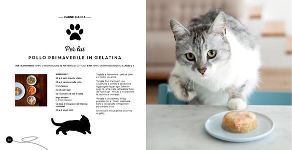 Ricette per il mio gatto... e per me! - Véronique Aïache,Laura Zuili - 6