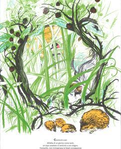 La battaglia delle rane e dei topi. Da Omero - Daniele Catalli - 3