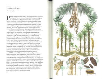 Il giro del mondo in 80 alberi - Jonathan Drori - 2