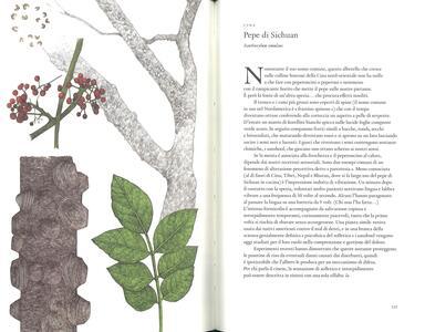 Il giro del mondo in 80 alberi - Jonathan Drori - 4