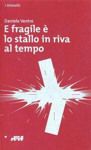 E fragile è lo stallo in riva al tempo - Daniele Ventre - copertina