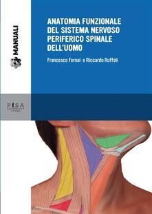 Anatomia funzionale del sistema nervoso periferico spinale dell'uomo - Francesco Fornai,Riccardo Ruffoli - ebook