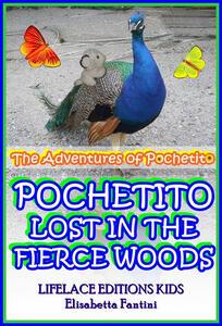 Pochetito lost in the fierce woods
