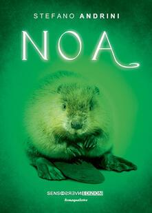 Noa - Stefano Andrini - copertina