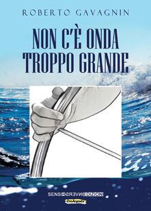 Non c'è onda troppo grande - Roberto Gavagnin - copertina