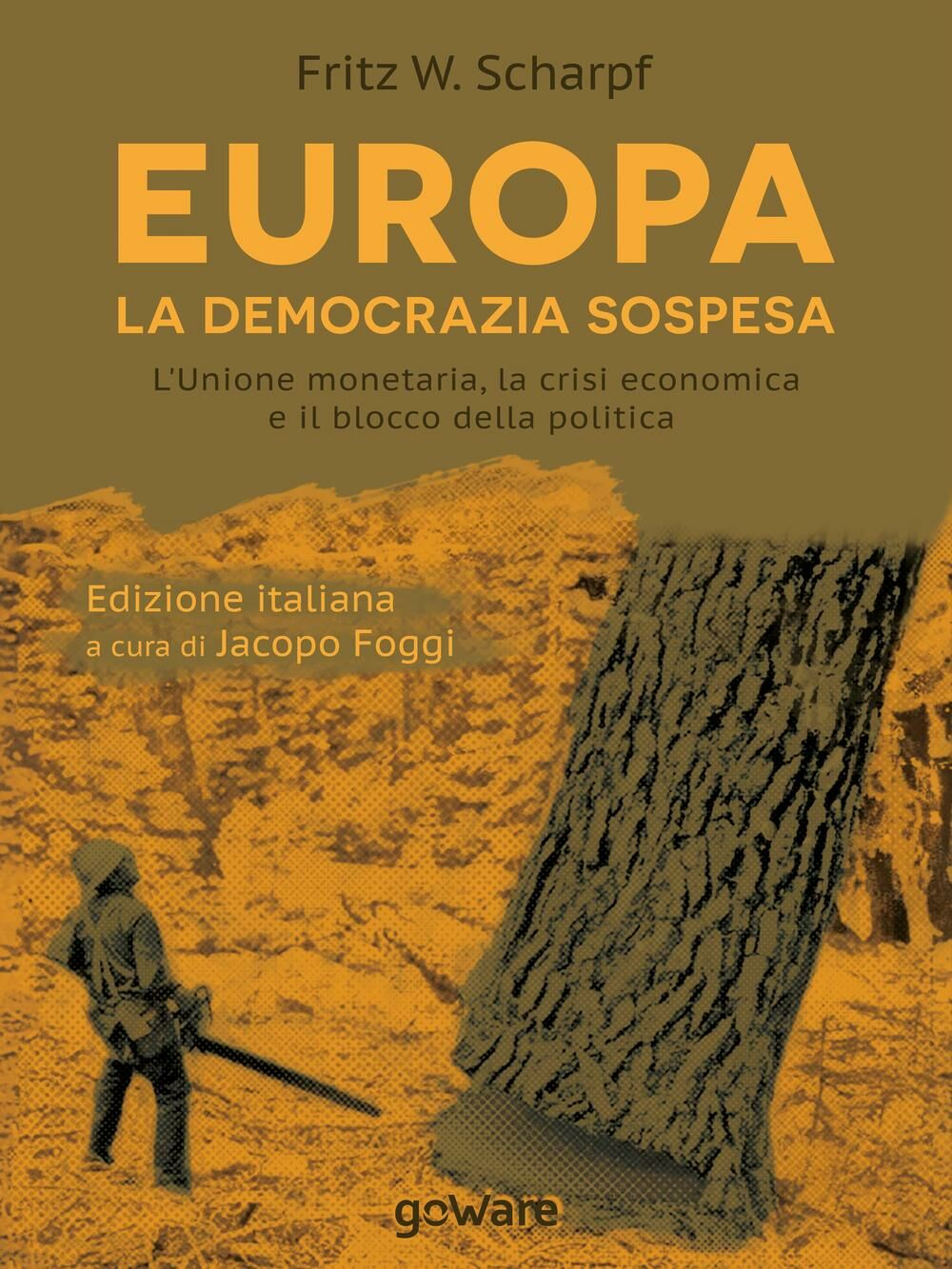 Europa. La democrazia sospesa. L'unione monetaria, la crisi economica e il blocco della politica