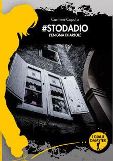 #stodadio. L'enigma di Artolè - Carmine Caputo - copertina