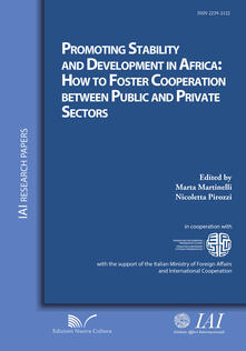 Promoting stability and development in Africa. How to foster cooperation between public and private sectors - copertina