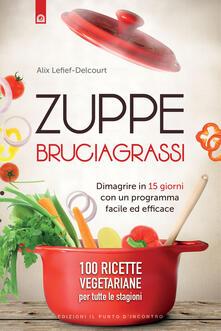 Camfeed.it Zuppe bruciagrassi. Dimagrire in 15 giorni con un programma facile ed efficace. 100 ricette veg per tutte le stagioni Image