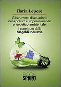 Gli strumenti di attuazione della politica europea in ambito energetico-ambientale. Il contributo della Magaldi Industrie