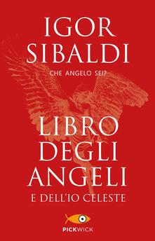 Squillogame.it Libro degli angeli e dell'io celeste. Che angelo sei? Image