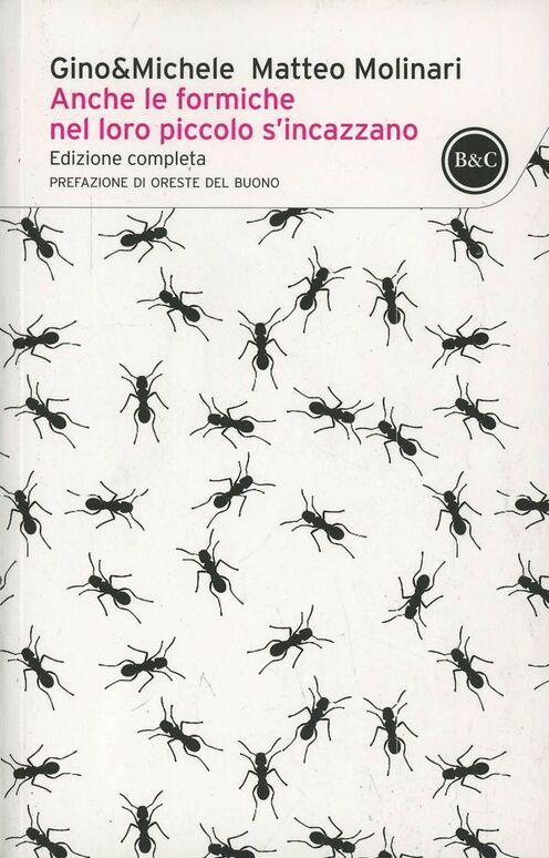 Anche le formiche nel loro piccolo si incazzano
