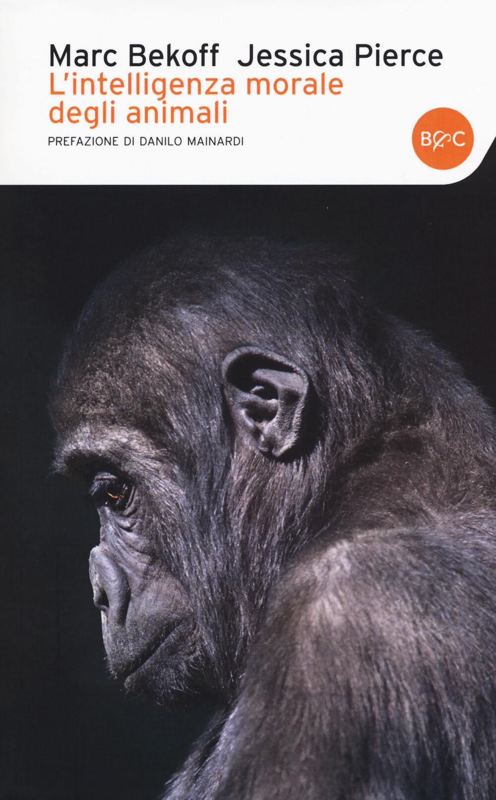 L' intelligenza morale degli animali