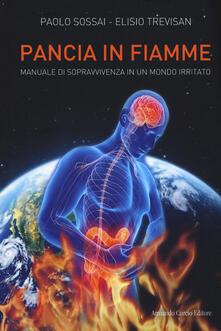 Winniearcher.com Pancia in fiamme. Manuale di sopravvivenza in un mondo irritato Image