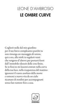 Le ombre curve - Leone D'Ambrosio - copertina