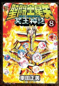 I cavalieri dello zodiaco. Saint Seiya. Next dimension. Vol. 9