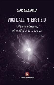 Voci dall'interstizio - Dario Caldarella - copertina