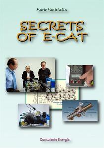 Secrets of E-Cat