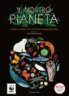 Antondemarirreguera.es Il nostro pianeta. L'unico luogo che tutti noi chiamiamo casa. Ediz. a colori Image