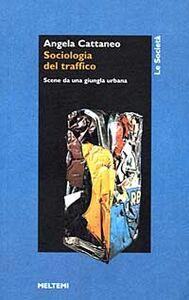 Sociologia del traffico. Scene da una giungla urbana