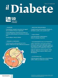 Il diabete (2017). Vol. 29
