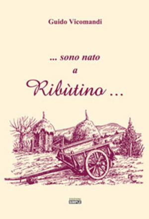 ...sono nato a Ribùtino...