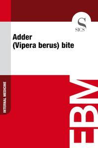 Adder (Vipera Berus) Bite