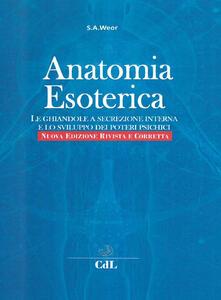 Antondemarirreguera.es Anatomia esoterica. Le ghiandole a secrezione interna e lo sviluppo dei poteri psichici Image