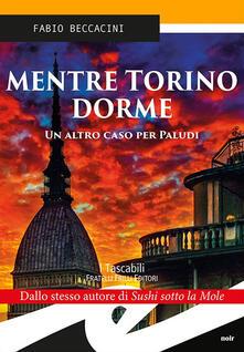 Mentre Torino dorme - Fabio Beccacini - copertina