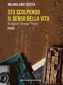 Voluntariadobaleares2014.es Sto scolpendo il senso della vita-Sculptez sensul vietii. Ediz. bilingue Image