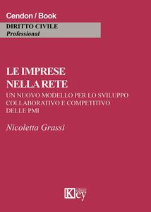Le imprese nella rete. Un nuovo modello per lo sviluppo collaborativo e competitivo delle PMI