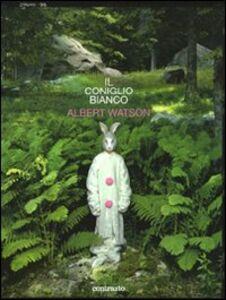 Il coniglio bianco