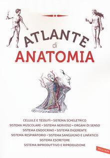 Equilibrifestival.it Atlante di anatomia. Ediz. a colori Image