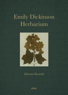 Antondemarirreguera.es Herbarium Image