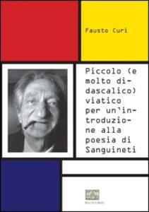 Piccolo (e molto didascalico) viatico per un'introduzione alla poesia di Sanguinetti