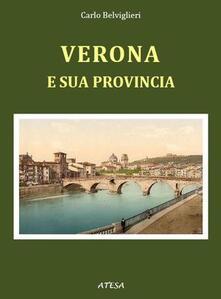 Equilibrifestival.it Verona e la sua provincia (rist. anast. Milano, 1860) Image