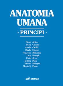 Anatomia umana. Principi - copertina