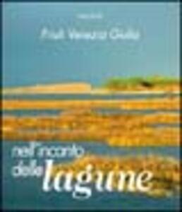 Friuli Venezia Giulia, nell'incanto delle lagune - Fabio Perco,M. Teresa Corso,Walter Filiputti - copertina