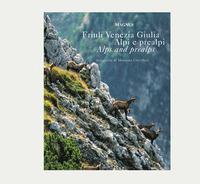 Alpi e Prealpi del Friuli Venezia Giulia - Perco Franco Gri G. Paolo Tagliaferri Marina - wuz.it
