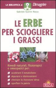 Le erbe per sciogliere i grassi - Gabriele Guerini Rocco - copertina
