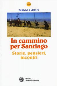 Libro In cammino per Santiago. Storie, pensieri, incontri Gianni Amerio